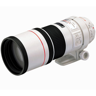 Canon EF 300mm f4.0 L Image Stabilised USM